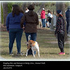 2016-01-05_P1053943_RBandBBcirus  Animal Walk,Tampa,Fl