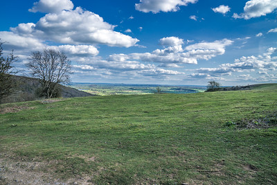 Glastonbury Tor in the distance