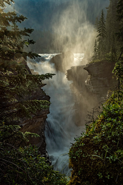 Athabasca Falls in Morning Mist
