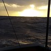 20161216_091604stern view waves