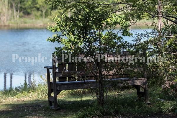 Bench@Lake-1