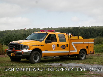 CARSONVILLE FIRE CO. BRUSH 19 2003 FORD/CFC BRUSH UNIT