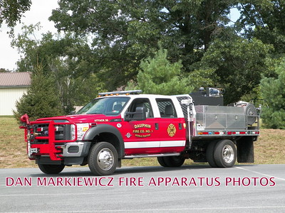 DAUPHIN MIDDLE PAXTON FIRE CO. ATTACK 38 2012 FORDFOUTS BRUSH UNIT