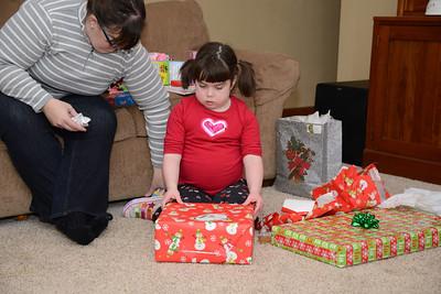 2014 01 02 28 Christmas at Home