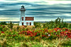 Fall Colors and New London Lighthouse