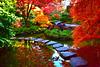 October 2019 - Japanese Garden
