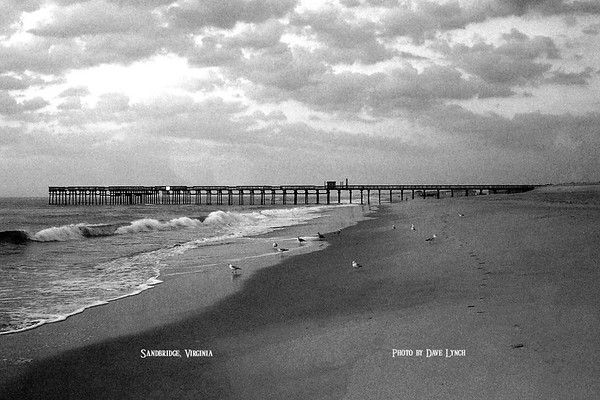 "Title: ""Sandbridge Pier"" Place: Sandbridge, VA Click ""Buy""  Above For Unmatted Prints    -  Watermark will not print on your order All photos available matted and framed: 5x7 -     $39 8x10 -   $49 11x14 - $69 16x20 - $149 All Photos Available In 5x7 NoteCards $3.95ea    10/$30 Email Your Order For Framed Prints And NoteCards:  ArtGalleryRiverRd@gmail.com"