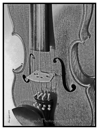 """Title: """"Violin"""" Place: Goochland, VA Click """"Buy"""" For Prints  Watermark will not print on your order  All photos available matted and framed: 5x7 -     $39 8x10 -   $49 11x14 - $69 16x20 - $149  All Photos Available In 5x7 NoteCards $3.95ea     10/$30  Email Your Order:  ArtGalleryRiverRd@gmail.com"""