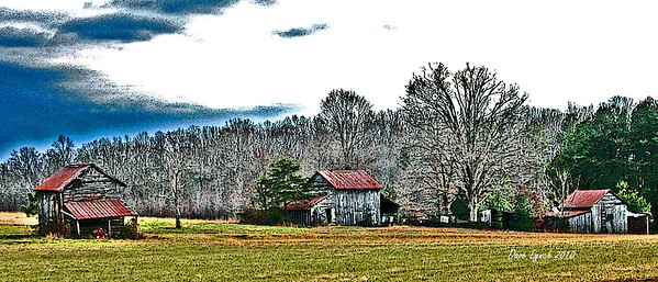 """Title: """"Tobacco Row """" Place: Charlotte County, Va Click """"Buy"""" For Prints Watermark will not print on your order All photos available matted and framed: 5x7 -     $39 8x10 -   $49 11x14 - $69 16x20 - $149 All Photos Available In 5x7 NoteCards $4.95ea     5/$20 Email Your Framed Or Card Order:  ArtGalleryRiverRd@gmail.com"""