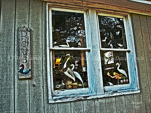 "Title: ""Decoys""   Place: OBX - Ocracoke Island, NC Click ""Buy"" To order Prints online  Watermark will not print on your order  All photos available matted and framed: 5x7 -     $39 8x10 -   $49 11x14 - $69 16x20 - $149  All Photos Available In 5x7 NoteCards $3.95ea     5/$2.95ea  Email Your Framed / NoteCard Order:  ArtGalleryRiverRd@gmail.com"
