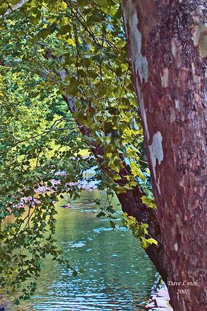 """Sycamore"" - Dunlap Creek -  Covington,VA  Watermark will not print on your order"