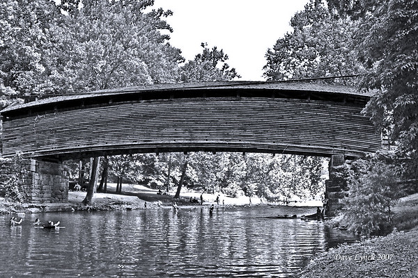 """Swimin under the Humpback"" - Black and White - Dunlap Creek - Covington, VA  Watermark will not print on your order"