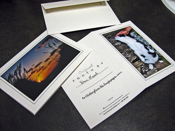 All Photos Available In 5x7 Note Cards $3.95ea     10/$30 Signed By Dave Lynch Framable - Card becomes a mat   All photos available matted and framed: 5x7 -     $39 8x10 -   $49 11x14 - $69 16x20 - $149  Email Your Order:  ArtGalleryRiverRd@gmail.com