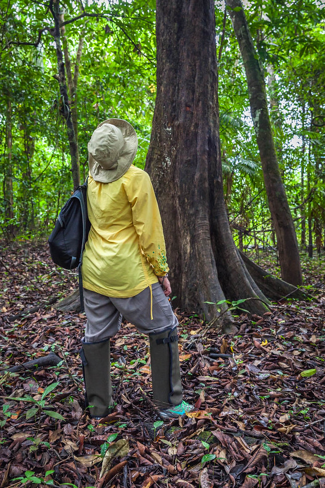 what to wear on an amazon river safari