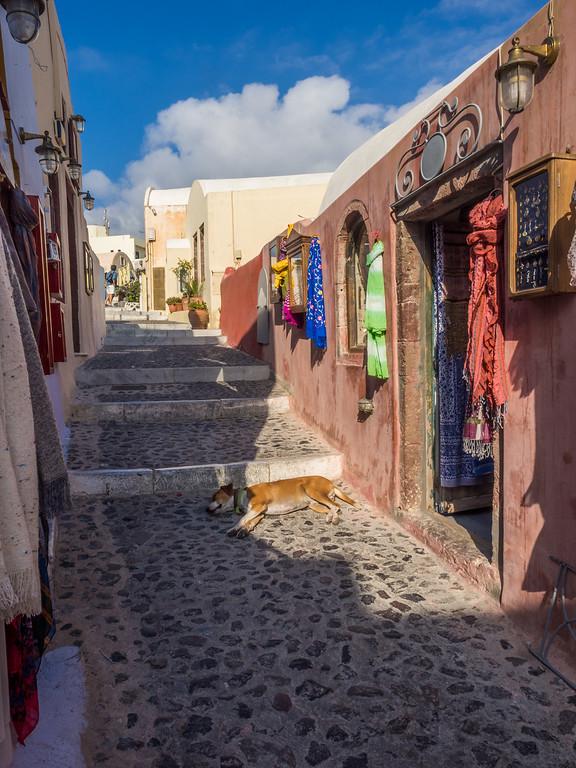 The narrow streets of Oia, Santorini.