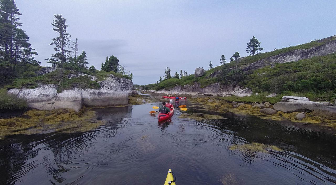 sea kayaking excursion nova scotia