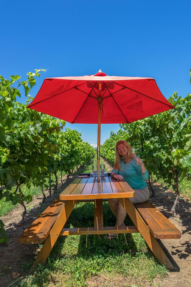 Niagara Falls Road Trip stop #3: Visit a Vineyard