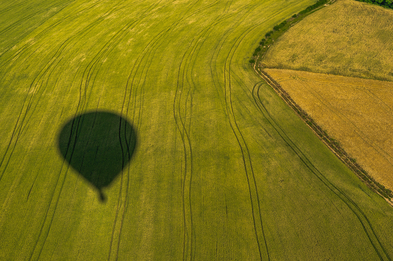 hot air balloon shadow in field