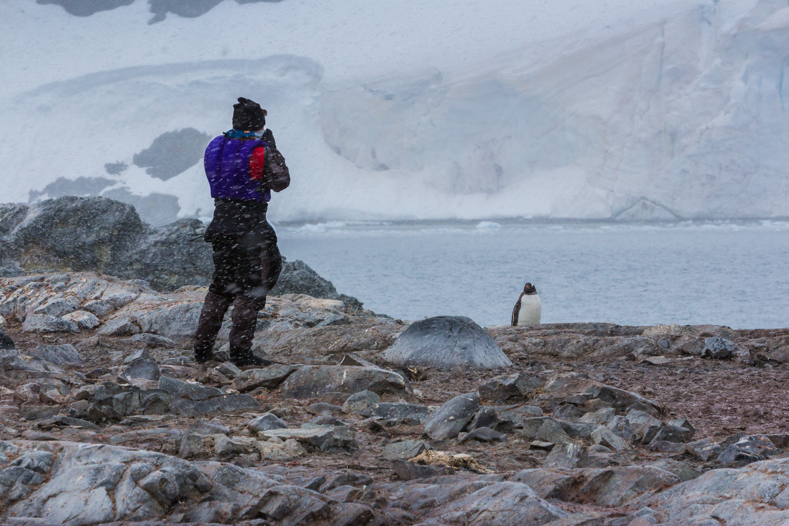 how to pack for an antarctica cruise kayaking
