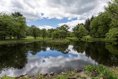 Ravenscliff Duck Pond