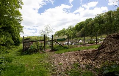 Willows-Skunk Hollow Community Gardens