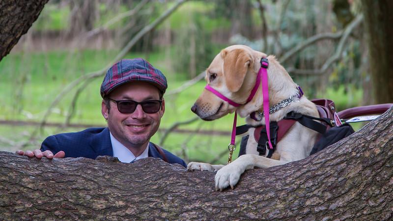 The Wonder of Alert Dogs