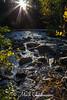 Dave's Falls Sunburst