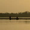 Morning fishing on lagoon, Crooked Tree wildlife sanctuary