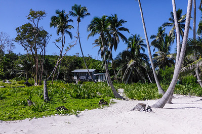 Island Expeditions camp at Half Moon Caye