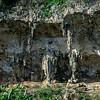 karst near Baracoa.ARW