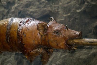 Pig roast.ARW