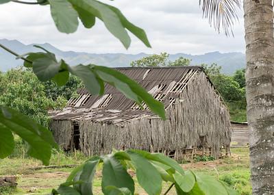 tobacco barn, el Mamay.ARW