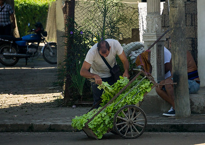 vegetable cart on the road to Santiago.ARW