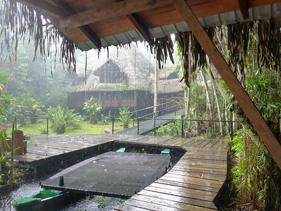 Rain at Sacha Lodge