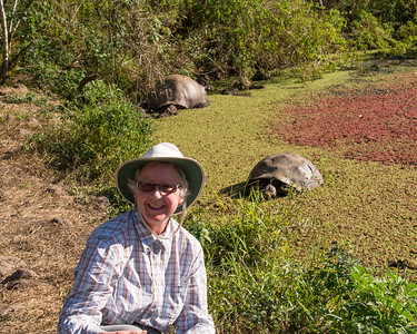 Giant tortoises - crossed off the bucket list
