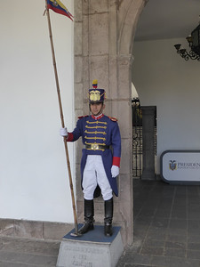 Guard at Presidential Palace