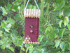 Photo send in by a customer of a bird in their Country Wine Birdhouse, just one monthh after installation.