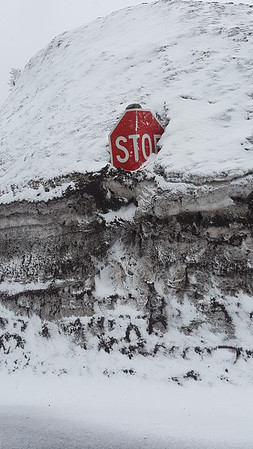 Stop sign peaking out on Mt Hood in OR