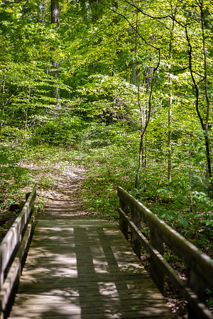 Davey Woods State Nature Preserve