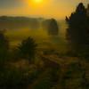 Sunrise Over Misty Valley, by David Everett