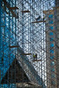 Scaffold Abstract on Science Center, by David Everett