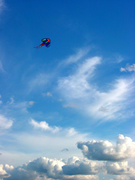 Kite Soaring in Clouds, by David Everett