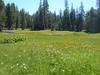 Fresno Camp Out 044