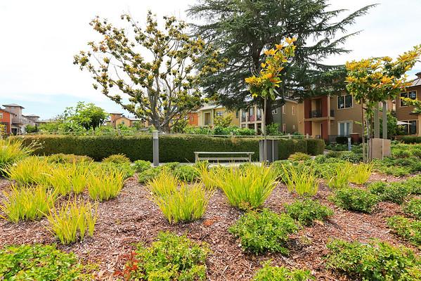 4206 Rickey's Way Palo Alto CA 94306, Unit N