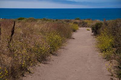 02 San Luis Obispo-2010-_MG_4490