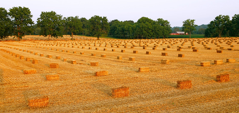 Hay Bales - Worthington, Maryland