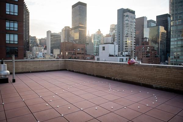 David Rooftop New York Proposal