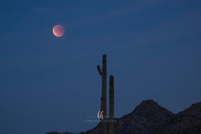 moon-3132-3
