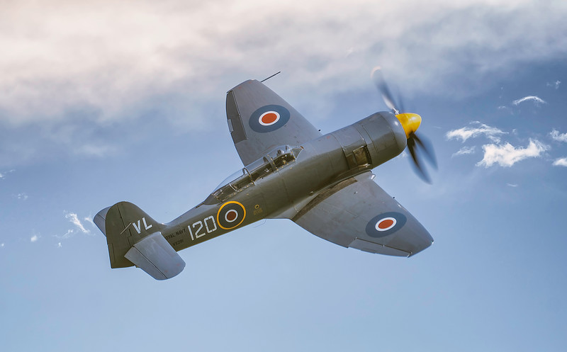 Hawker Sea Fury T20 VX281 VL-120 (G-RNHF) In Blue skies At Duxford Air Festival 2018 By David Stoddart