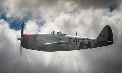 "Republic P-47D Thunderbolt 549192 ""Nellie"" By David Stoddart"